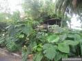 101-StVincent-MarinaBlueLagoon
