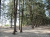 Camping du parc national - Koh Adang