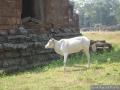 026-AngkorThom