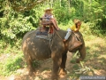 061-Baladeenelephant-KohChang