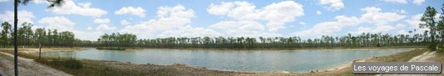 Panoramique sur un lac des Everglades