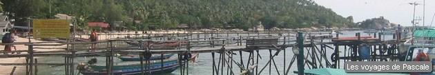 Débarcadère Koh Tao