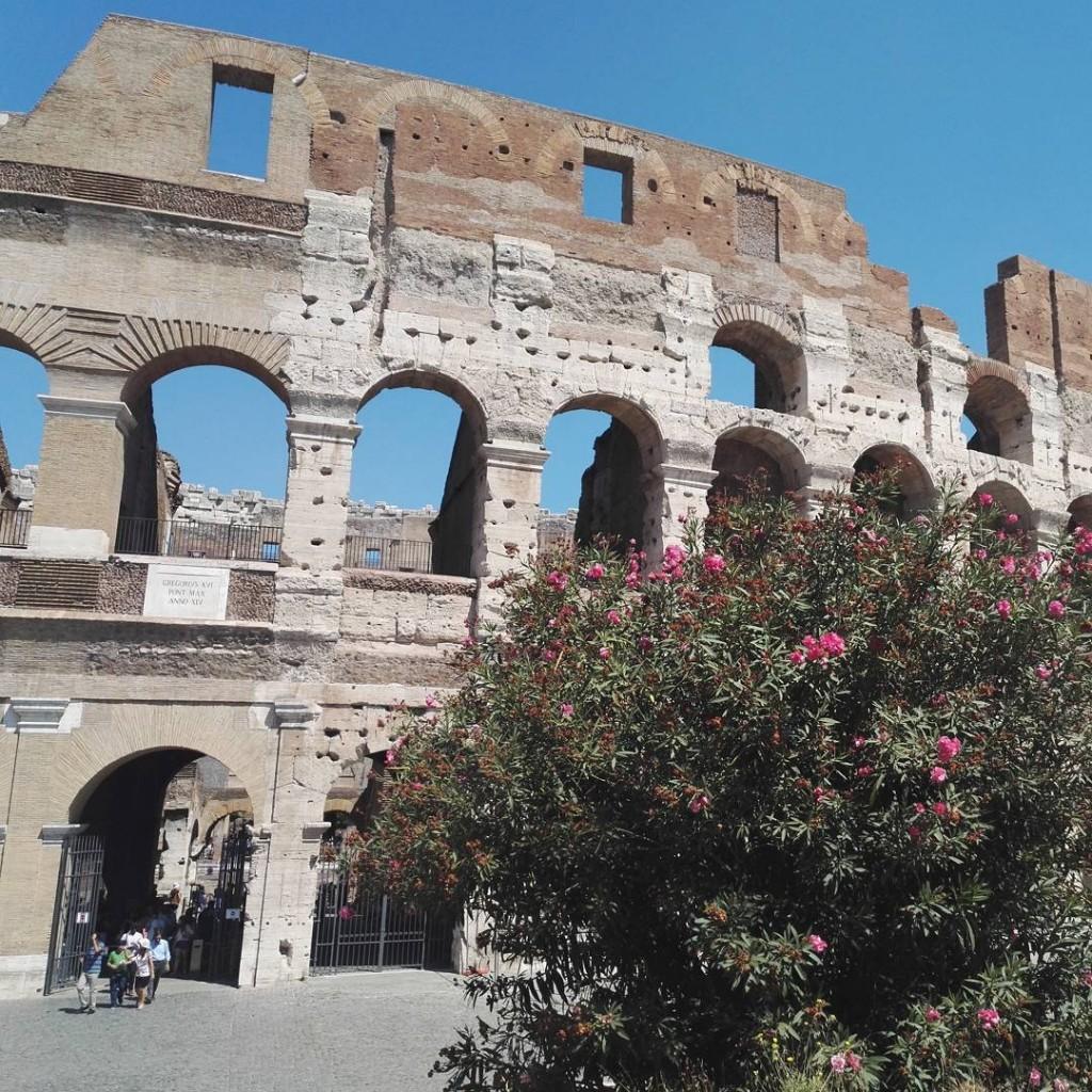 Colise