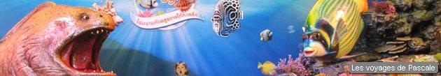 Aquarium de Bkk