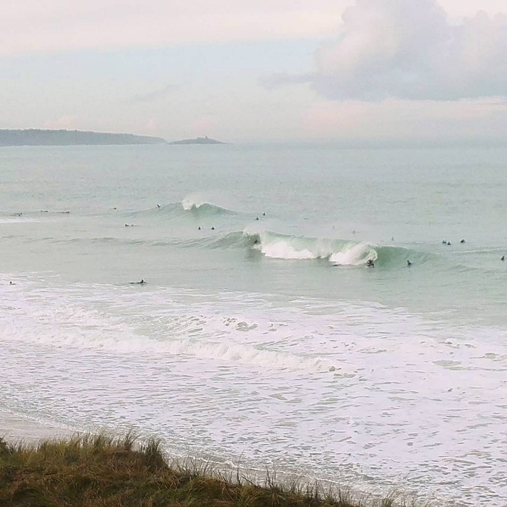 Surf  gogo
