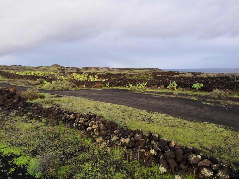 Verte et noire Lanzarote